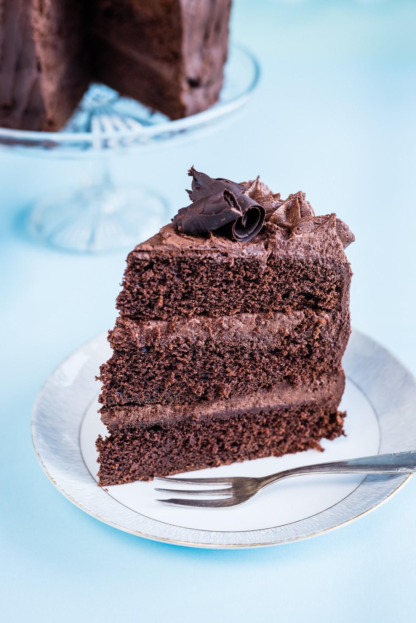 Chocolate_Cake_slice - FAB